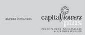 capitalflower
